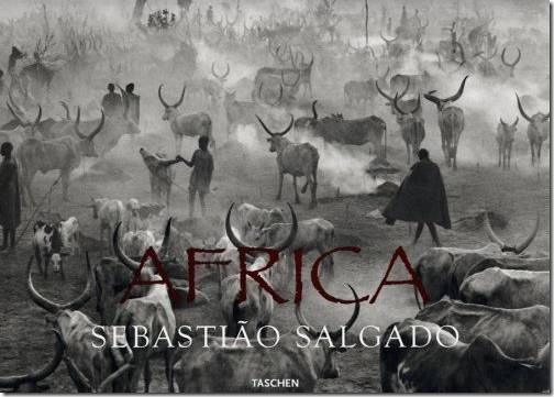 book_africa_salgado