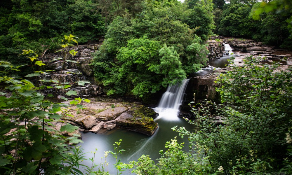 Bonnington Linn - Falls of Clyde